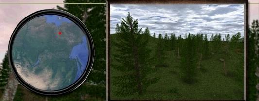 Yakutia Forest