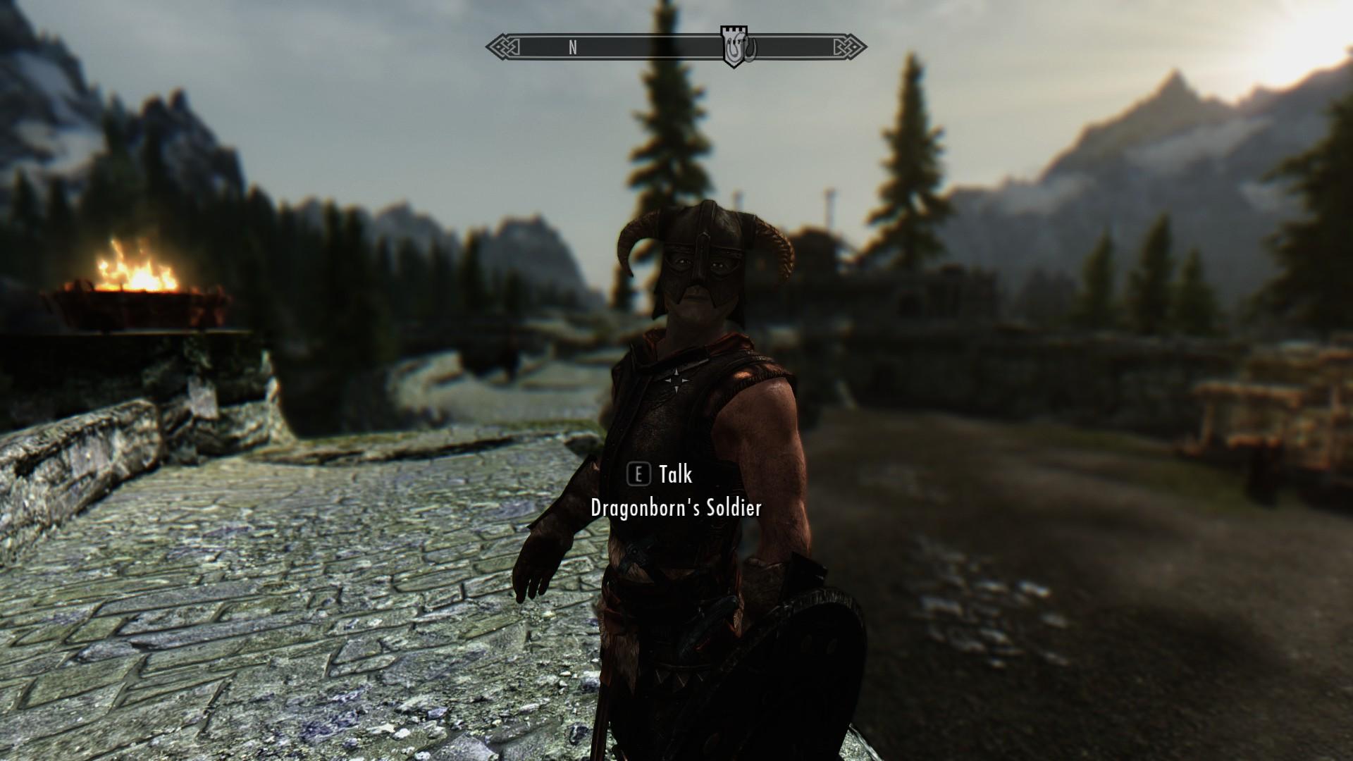 Dragonborn's Soldier