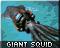 squidicon