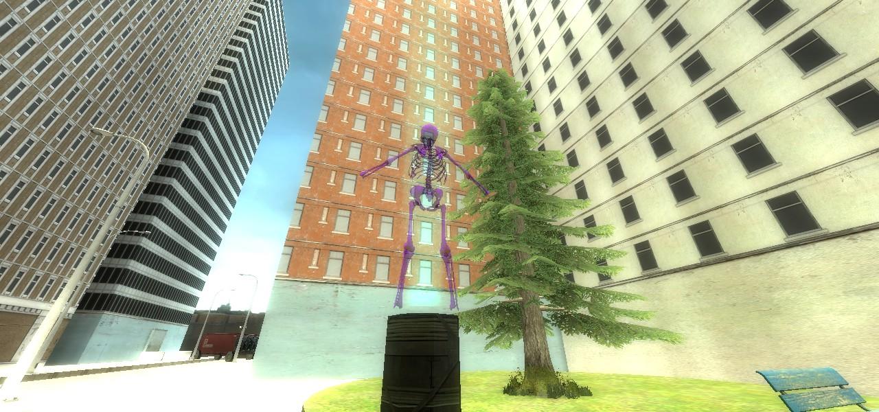 The Skeleton Hallucination