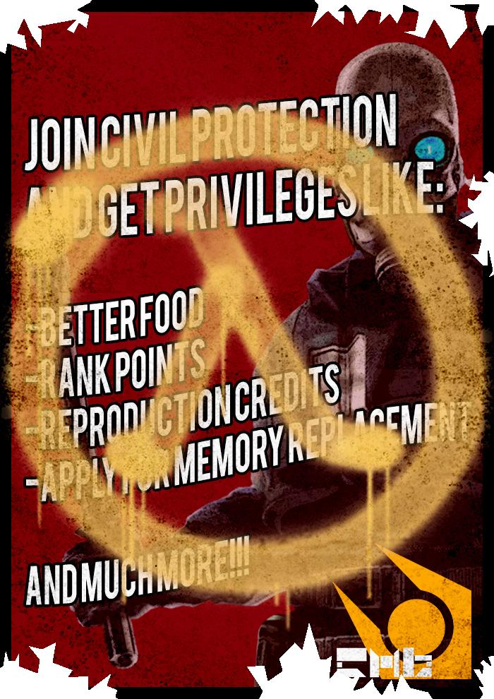 Privileges Vandalized Poster