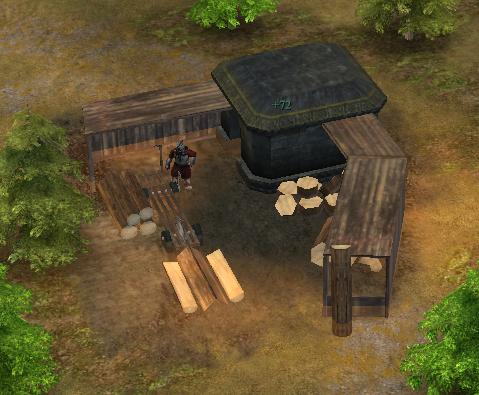 Iron Hills Woodworker with Dwarven Riches