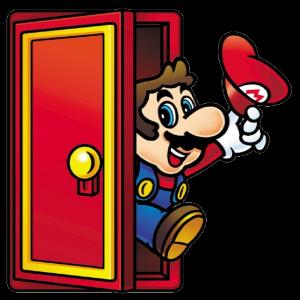 Mario door