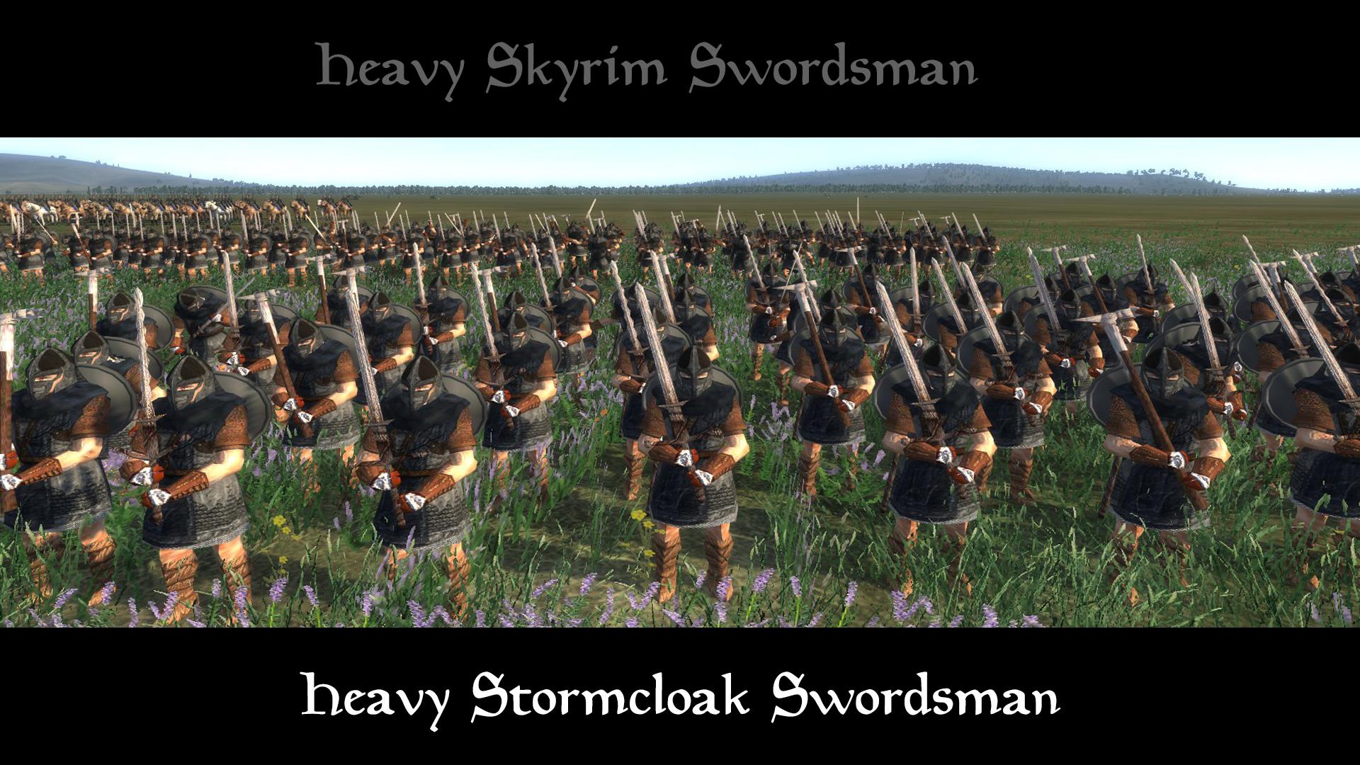 heavy stormcloak swordsman