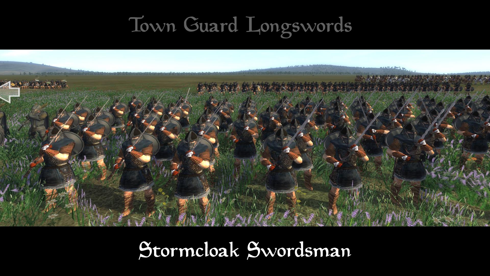 stormcloak swordsman