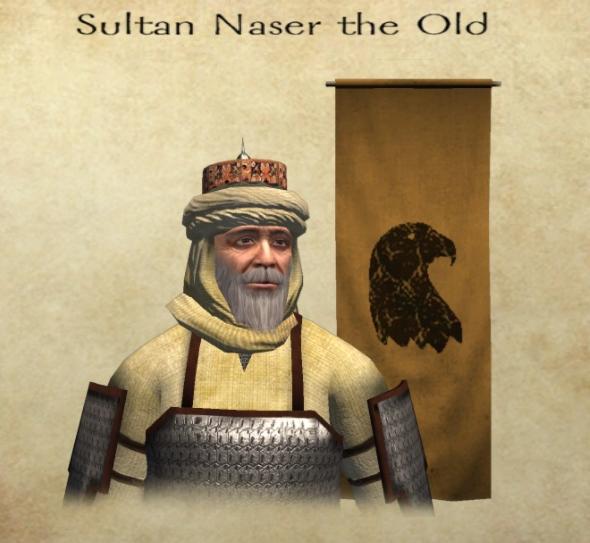 Ruler of Naserid Sultanate