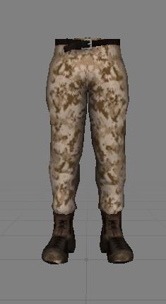 US Combat Pants