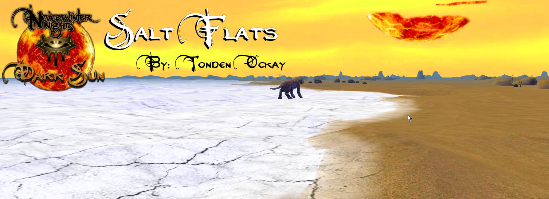 Salt Flats 001