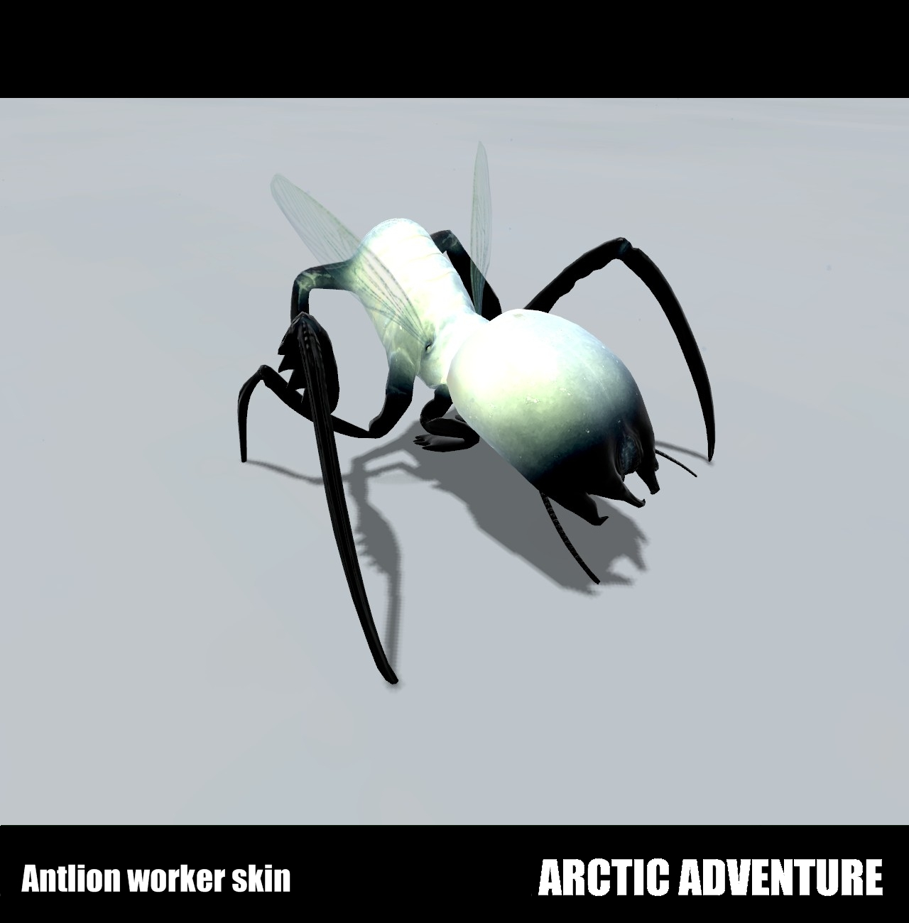 Antlion Worker Arctic antlion worker ...
