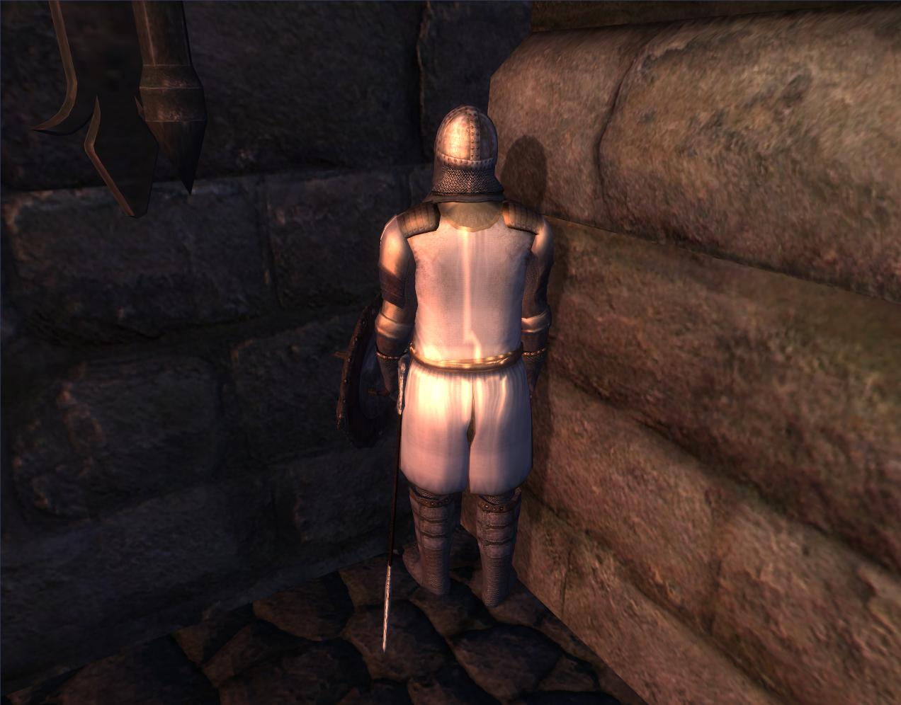 Oblivion guard sex erotic photo