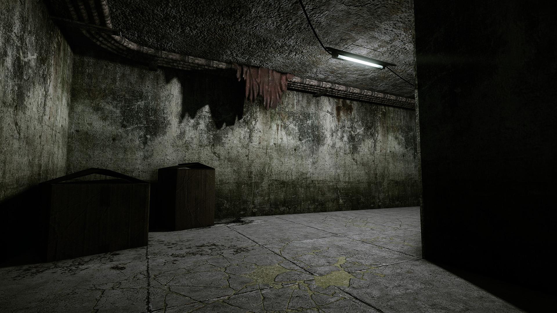 the novella life of illuscia nester himawari the basement