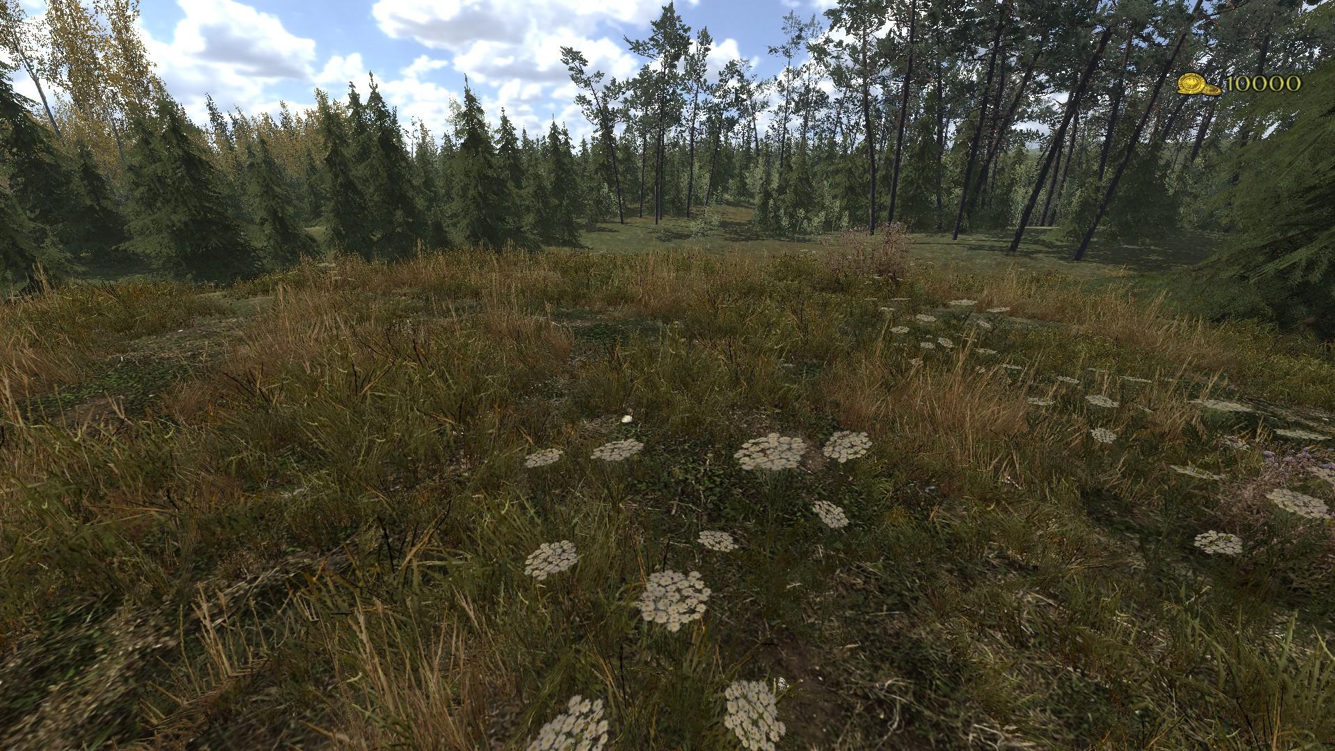 Mount Blade: Warband, pliki do gry GRYOnlinepl