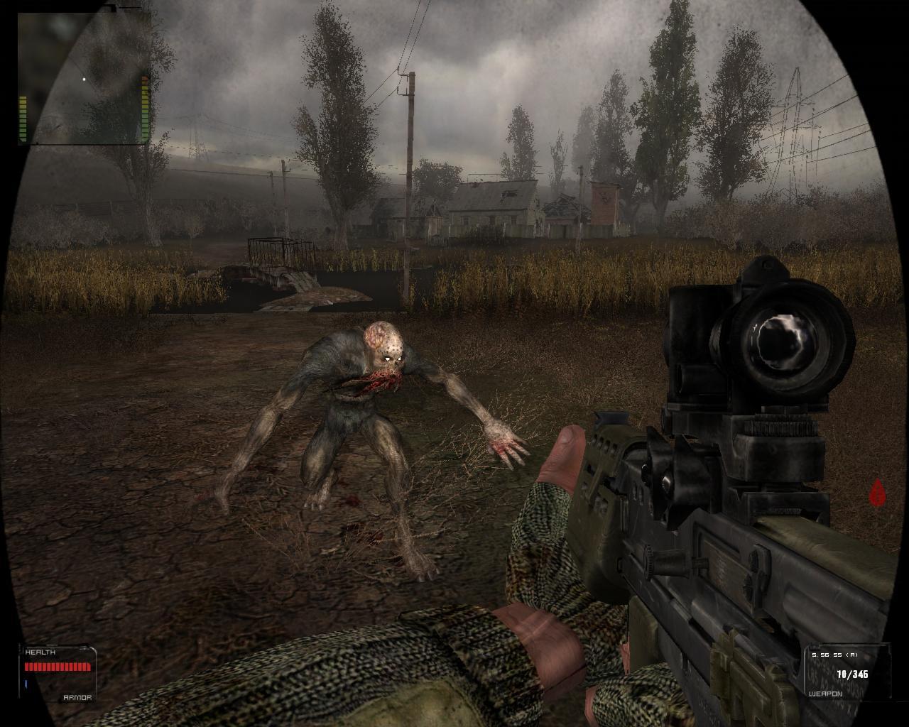 Stalker in the swamp house
