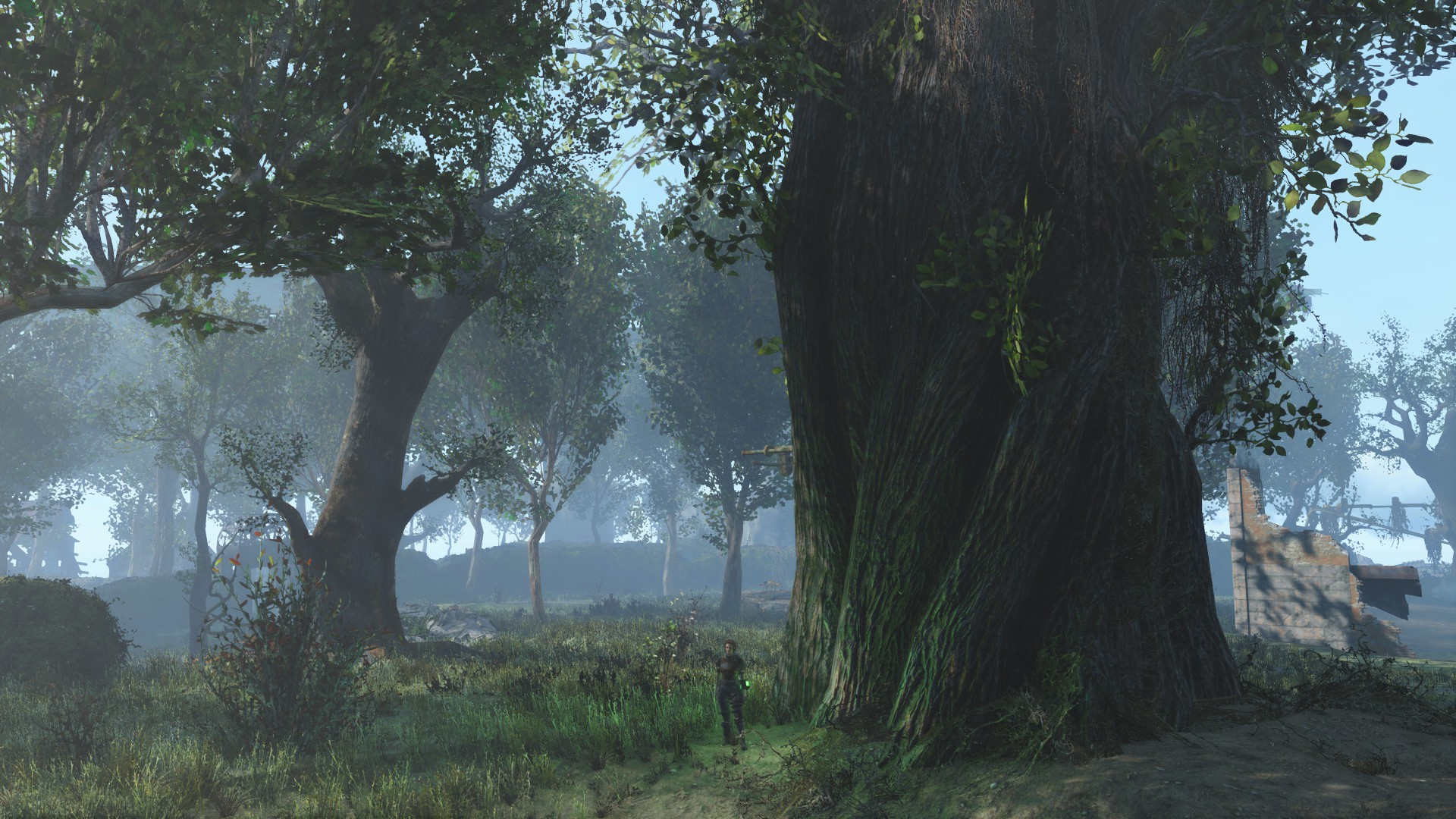 Giant Trees In New Eden image - Fallout: Liberty Hell mod for