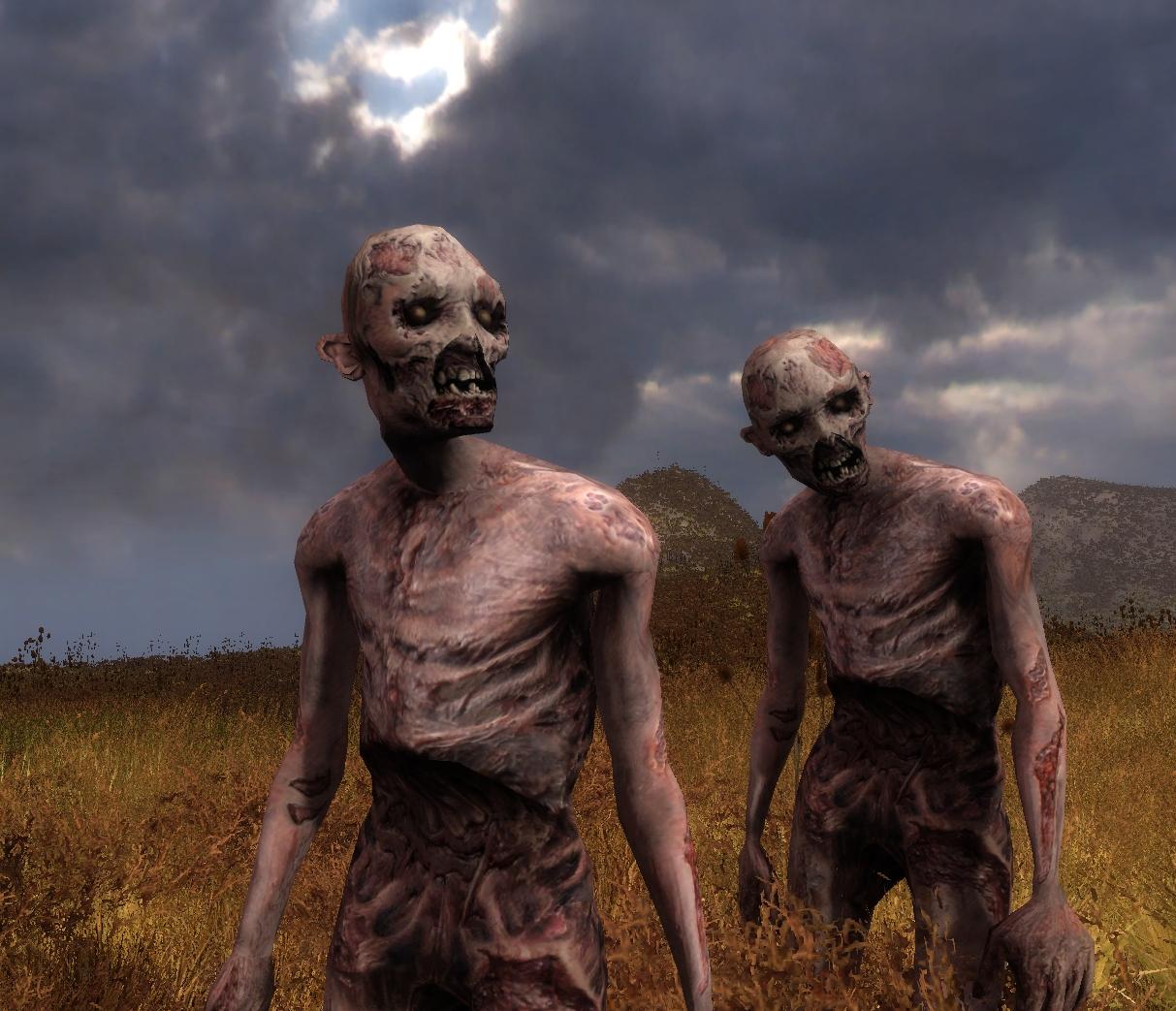 сочетать картинки сталкере зомби брокколи сохранили свой