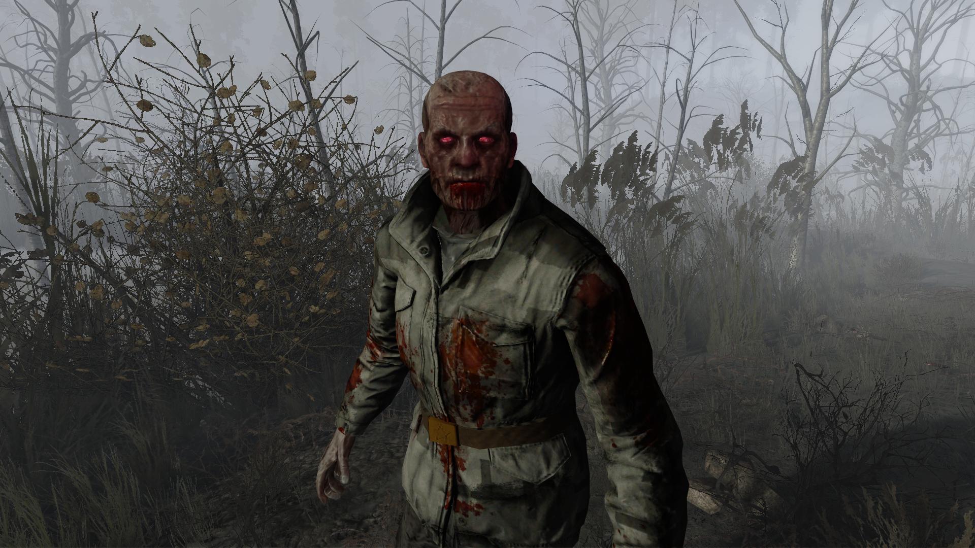 мощь картинки сталкере зомби глядя