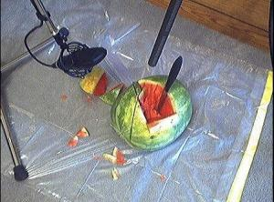 I told you they got to stab watermelons. How else d'you think the headshot sound is made?